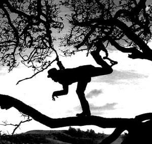 Tom Waits-Tree