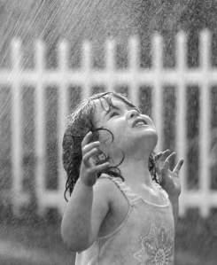 zambet ploios